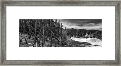 Vermont Winter Mount Mansfield Mountain Forest Snow Black And White Framed Print