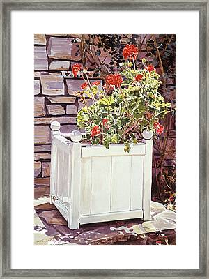Versaille Box Of Geraniums Framed Print by David Lloyd Glover