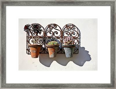 Vertical Cacti Garden Framed Print by Kate McKenna