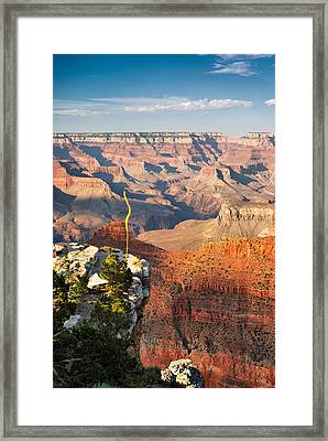 Grand Canyon At Sunset Framed Print by Gregory Ballos