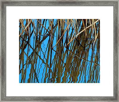 Vertical Reflections Framed Print by Steven Milner