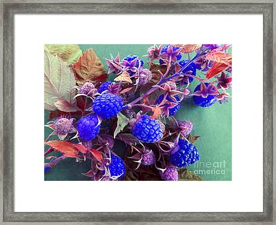 Very Blue Berries Framed Print by Tina M Wenger