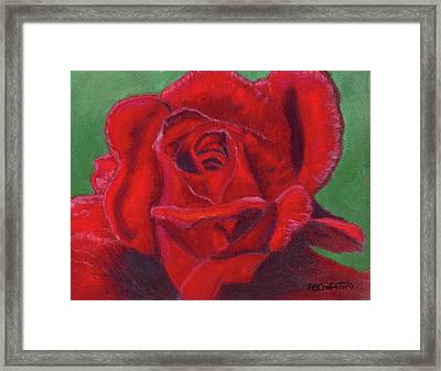 Framed Print featuring the painting Very Red Rose by Arlene Crafton