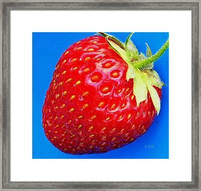 Very Strawberry  Framed Print by Chris Berry