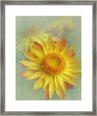 Very Yellow Framed Print by David and Carol Kelly