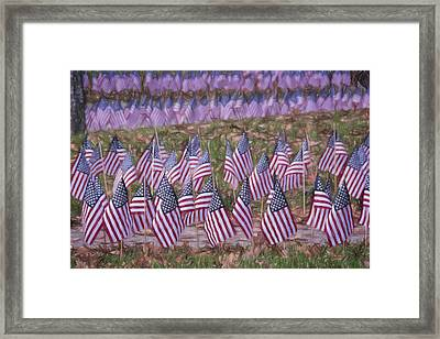 Veterans Day Display Color Framed Print