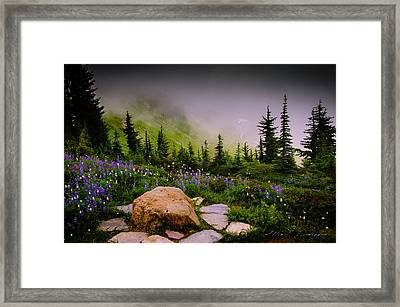 Vibrance And Clouds Framed Print