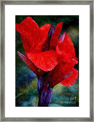 Vibrant Canna Bloom Framed Print