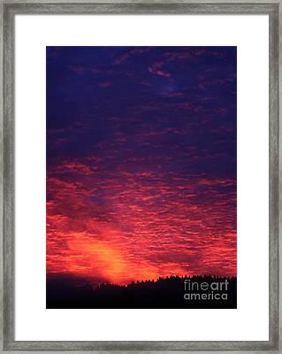 Vibrant Dawn Framed Print by Erica Hanel