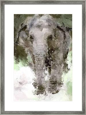 Vibrant Elephant Framed Print