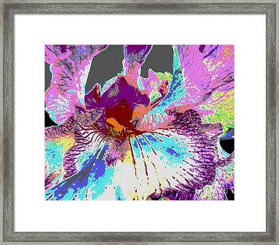 Framed Print featuring the photograph Vibrant Petals by Sally Simon