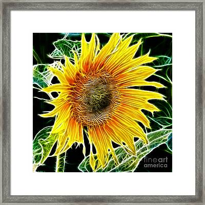Vibrant Sunflower Framed Print by Mariola Bitner