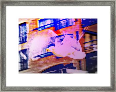 If I Was A Seagull, I Would Be Vibrating My Wings And Try To Fly  Framed Print by Hilde Widerberg