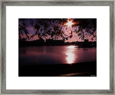 Victoria British Columbia Sunset Framed Print by Barbara St Jean
