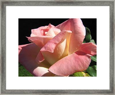 Framed Print featuring the photograph Victorian Beauty by Jennifer Wheatley Wolf