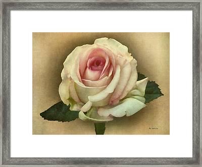 Victorian Blush Framed Print by RC deWinter