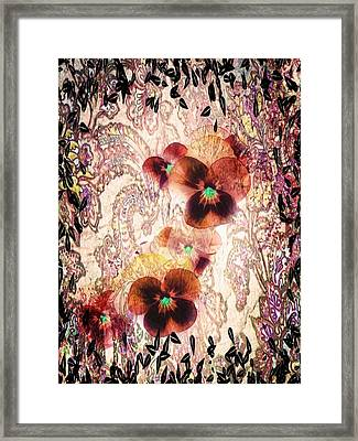 Victorian Pansies Framed Print by Terry Atkins