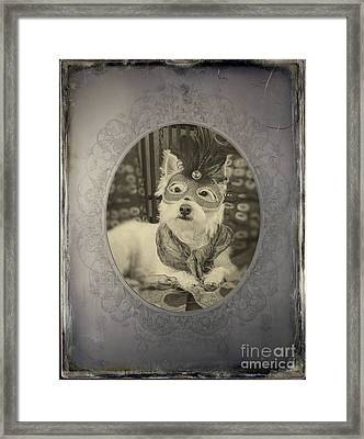 Victorian Westie Framed Print by Edward Fielding
