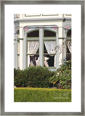 Victorian Window Framed Print by Chris Selby