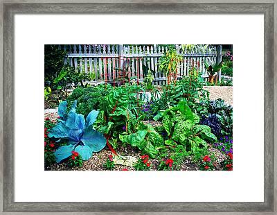 Victory Garden Framed Print