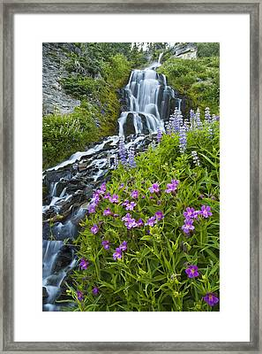 Vidae Falls And Flowers Framed Print