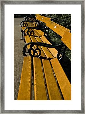 Vienna Benches Framed Print by Gabor Fichtacher
