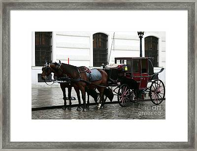 Vienna Carriage Framed Print by John Rizzuto