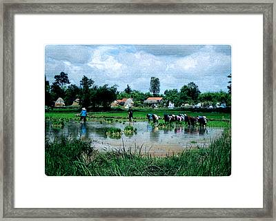 Vietnam Mekong Delta Framed Print by Udo Linke