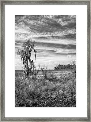Framed Print featuring the photograph View For The Levy by Howard Salmon