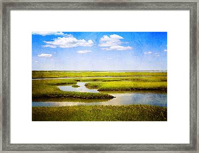 View From Bass Hole Boardwalk At Grays Beach Yarmouth Port Ma Cape Cod Framed Print by Brooke T Ryan