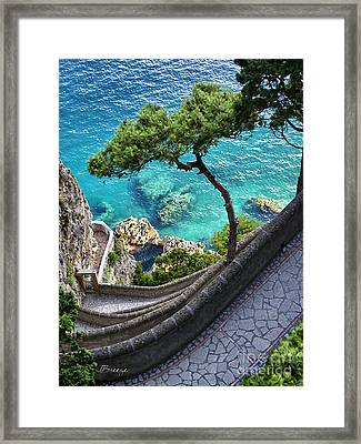 View From Capri.italy Framed Print