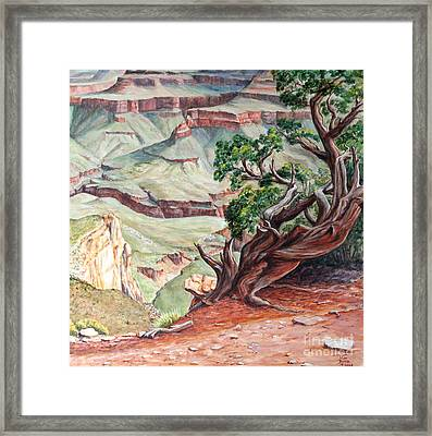 View From Cedar Ridge Trail Framed Print