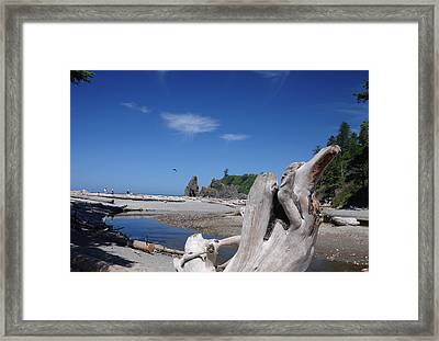 View From Deadwood Framed Print by SEA Art