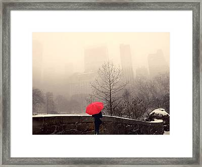 View From Gapstow Bridge Framed Print