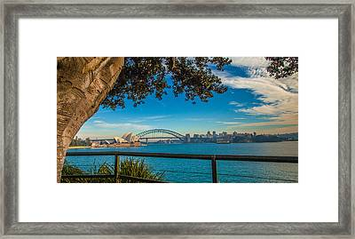 View From Lady Macquarie's Chair Framed Print by Dasmin Niriella