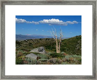 View From Laurel Lakes Trail Framed Print