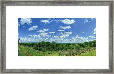 View From Monticello Framed Print