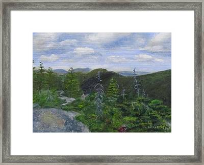 View From Noon Peak Framed Print