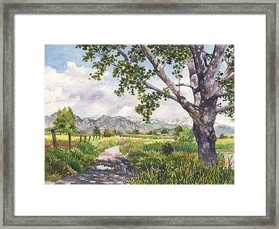 View From Stearns Lake Framed Print by Anne Gifford
