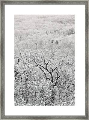 View From Taum Sauk Mountain In Missouri Framed Print