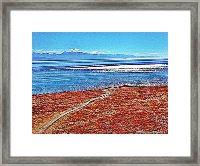 View From The Battery At Fort Ebey Framed Print