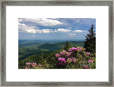 View From The Blue Ridge Parkway  Spring 2010 Framed Print