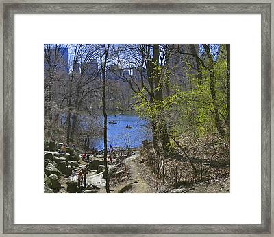 View From The Brambles Framed Print by Muriel Levison Goodwin