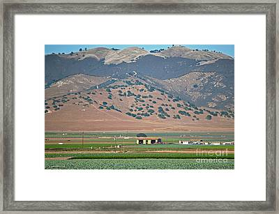 View From The Crops Framed Print