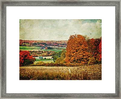 View From The Hill... Framed Print by Lianne Schneider