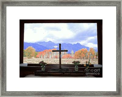 View From The Inside Framed Print