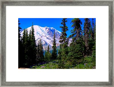 View From The Meadow Framed Print by David Patterson