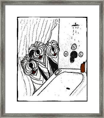 View From The Shower Framed Print