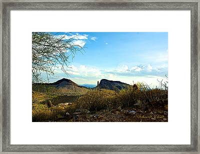 View From The Top Framed Print by Barbara Zahno
