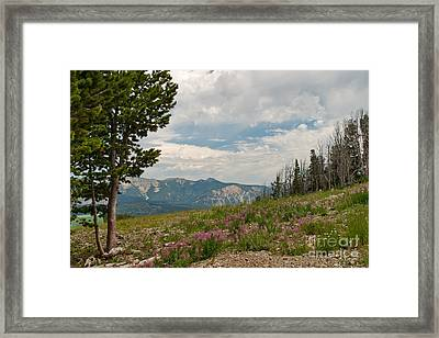 Framed Print featuring the photograph View From The Top by Charles Kozierok